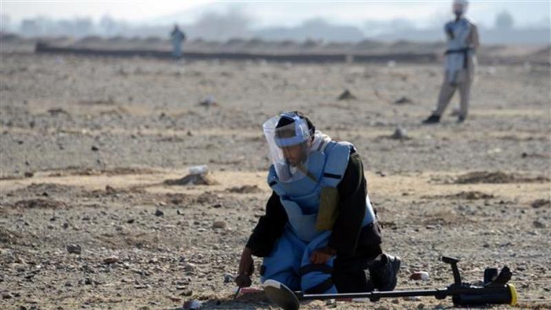 کشته و زخمی شدن ماهیانه ۱۲۰ افغان در انفجار مین