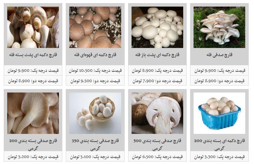 افزایش قیمت قارچ در غرفه تره بار