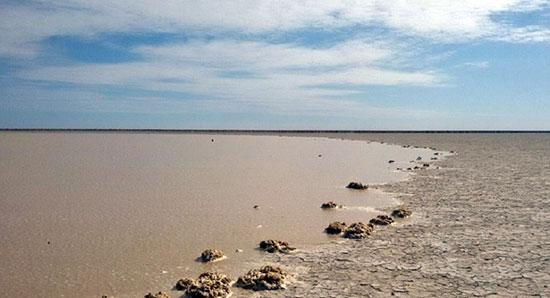 بارانهای بهاری  تمامی تالابهای کشور رقم زد