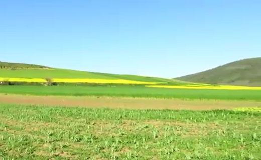 طبیعت چشمنواز و بینظیر در روستای مرزین + فیلم