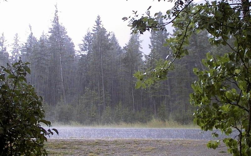 سال آبی جاری پربارشترین سال نیم قرن اخیر/ یکهزار میلیمتر اختلاف بارش بین غرب و شرق کشور
