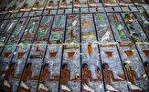 باشگاه خبرنگاران -کشف معبد ۴۳۰۰ ساله در مصر با نقاشیهای دیواری رنگآمیزی شده + تصاویر