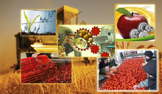 نقش روستاها در افزایش رونق تولیدی کشور/ از لزوم توسعه تولیدات سنتی تا راه اندازی صنایع تبدیلی