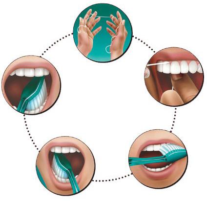 ویتامینی که کمبودش خون به پا میکند/ اسکوبورت چه بلایی برسر دهان ما میاورد/ علت و درمان خونریزی لثه