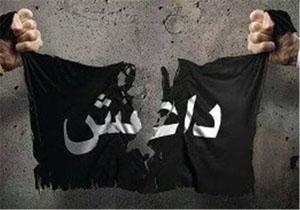 برنامهریزی ناکام داعش برای حملات تروریستی گسترده در سراسر اروپا