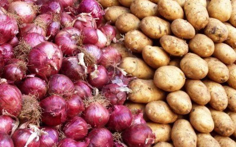 کاهش ۵۰ درصدی قیمت پیاز در راه است/نرخ هر کیلو سیب زمینی نو در میدان ۵ هزار تومان