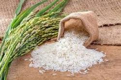 کشف ۵ تن برنج قاچاق از یک دستگاه خاور