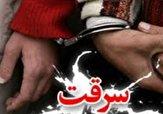 باشگاه خبرنگاران - سارقان حرفهای با ۳۳ فقره سرقت در بجنورد به دام افتادند