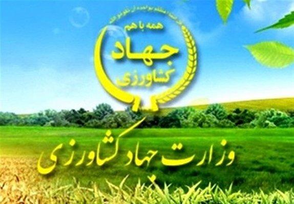 باشگاه خبرنگاران -جذب ۱۰۰۰ نفر نیروی انسانی متخصص در وزارت جهاد کشاورزی