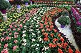 باشگاه خبرنگاران -آغاز بکار نمایشگاه تخصصی، گل و گیاه، گیاهان دارویی و نهادهها در ارومیه