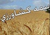 باشگاه خبرنگاران - بیش از ۱۱۱ هزار هکتار اراضی کشاورزی در کردستان بیمه است