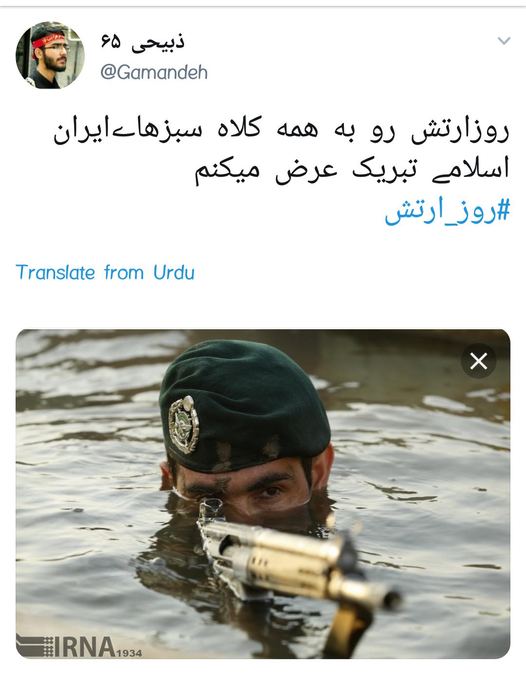 #ارتش / روز خورشید های کلاه سبز روزهای خاکستری دفاع +تصاویر