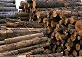 باشگاه خبرنگاران - کشف ۴ تن چوب آلات جنگلی قاچاق در نکا