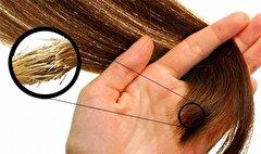 باشگاه خبرنگاران - دشمنان موهای خود را بشناسید +زمان مناسب برای شست و شوی مو