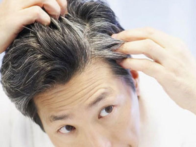 (دانستنی) دانههایی مفید برای سیاه کردن موها/ در طول دوران عادت ماهیانه چه موادی را نباید مصرف کرد؟/ میوهای ترش برای تقویت استخوان