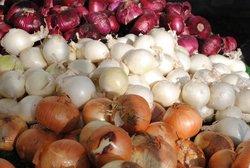 قیمت پیاز تا ۲ روز آینده کاهش مییابد/ افزایش قیمت پیاز با تعطیلی میادین میوه و تره بار