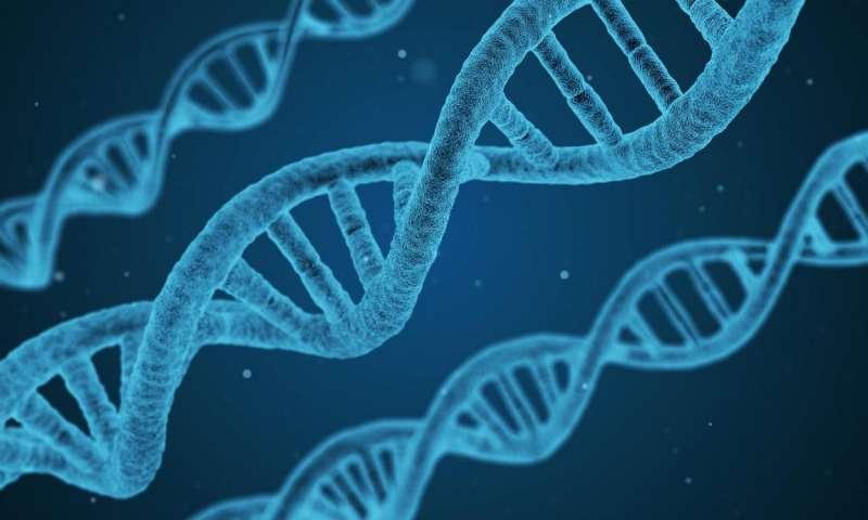 انجام پیوند سلولهای بنیادی و مغز استخوان در مرکز طبی کودکان/ ژنتیک عامل اصلی ابتلا به اسم و بسیاری از بیماریها