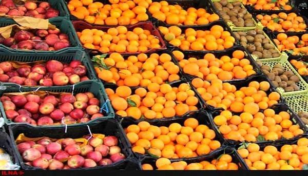ممنوعیت صادرات سیب درختی و پرتقال لغو شد