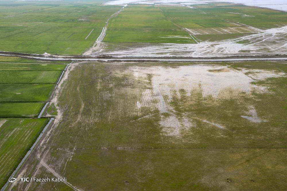 آخرین تصاویر هوایی از مناطق سیلزده گلستان