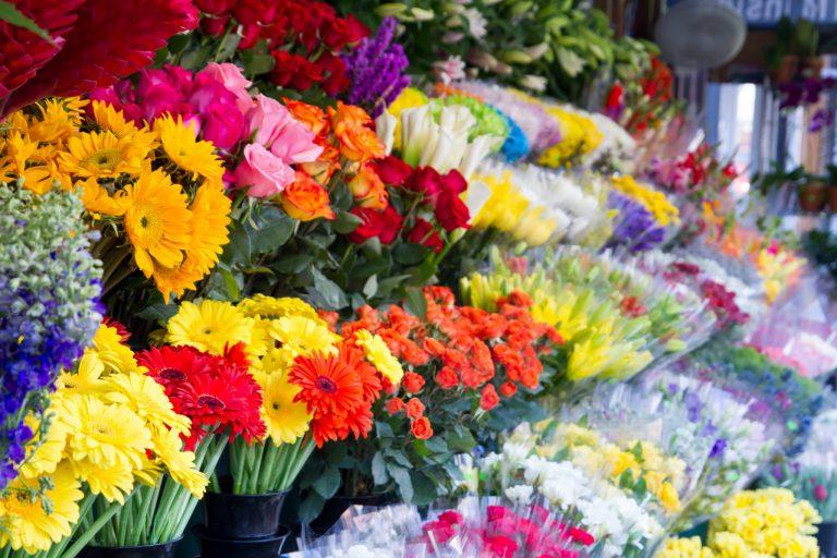 آخرین تحولات بازار گل/نرخ مصوب هر شاخه گل رز ۱۰ هزار تومان
