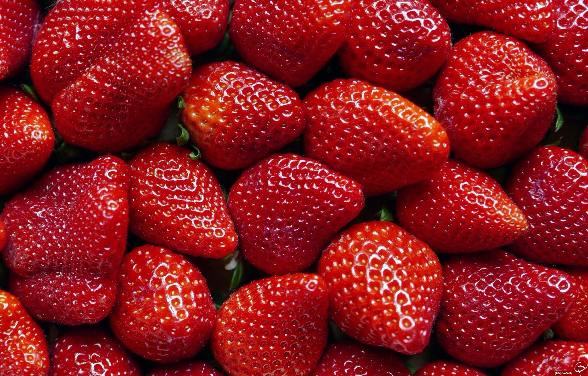 با این ماده غذایی سلامت استخوانهایتان را تضمین کنید/ خوراکیهایی برای مبارزه با التهاب بدن/ خوردن توت فرنگی را در بهار فراموش نکنید