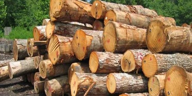 کشف ۱۸ تن چوب قاچاق در کرمان
