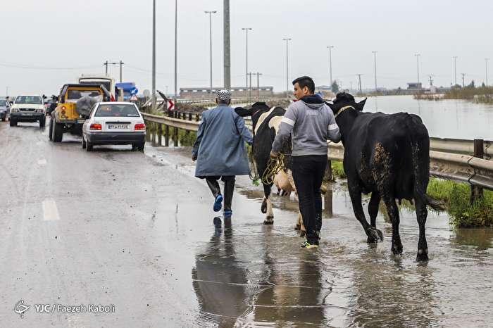 وضعیت مناطق سیل زده آق قلا در پنجمین روز حادثه