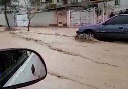 جاری شدن سیلاب در معابر شیراز + فیلم