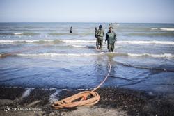صید ماهی استخوانی در مازندران