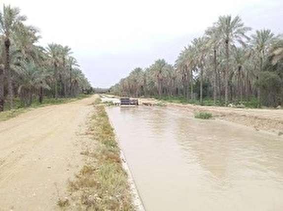 باشگاه خبرنگاران -به محدوده کانال های آبیاری نزدیک نشوید/ هدایت روانآب رودخانه دالکی به سمت نخلستانها