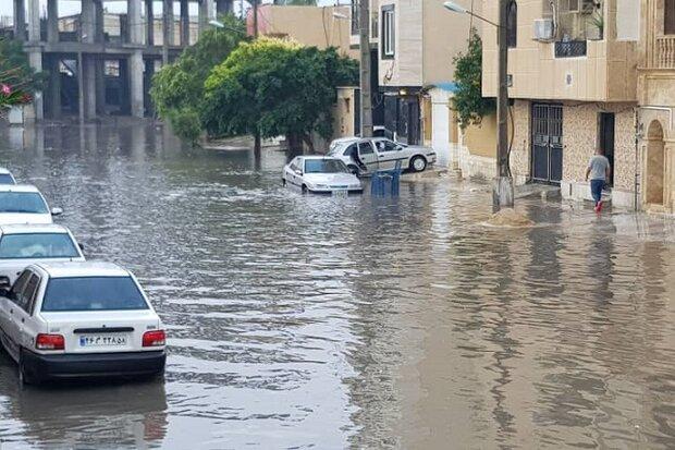 بارش باران باعث آبگرفتگی معابر و ریزش کوه در برخی نقاط بوشهر شد