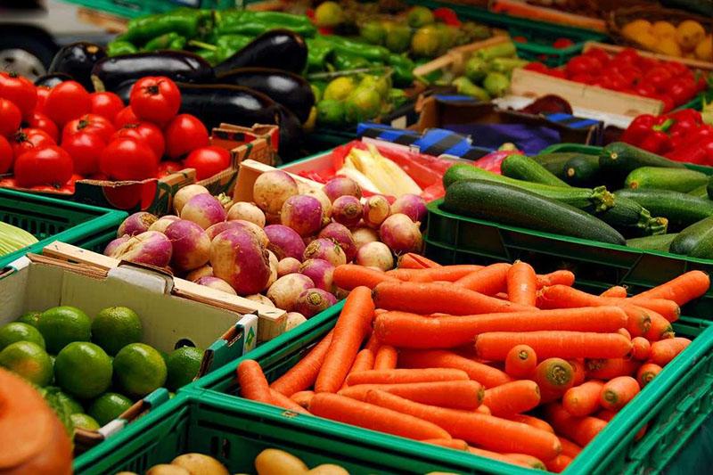 محصولات کشاورزی استان بوشهر گواهی شده می شوند