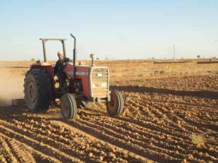 خشکهکاری اراضی به علت نبود بارش موثر باران در شیروان