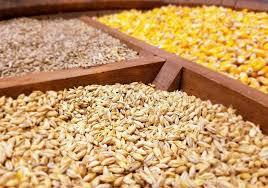 قیمت نهاده های دامی و کشاورزی