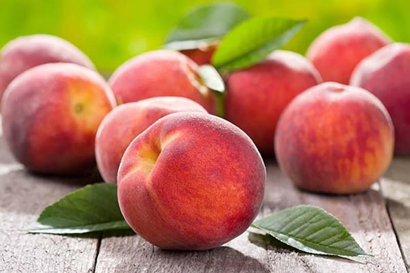 برای وزن کم کردن این میوه را بخورید