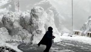 فرار گردشگران از بهمن