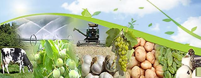 ۴ کشاورز برتر همدانی در جمع کشاورزان نمونه ملی