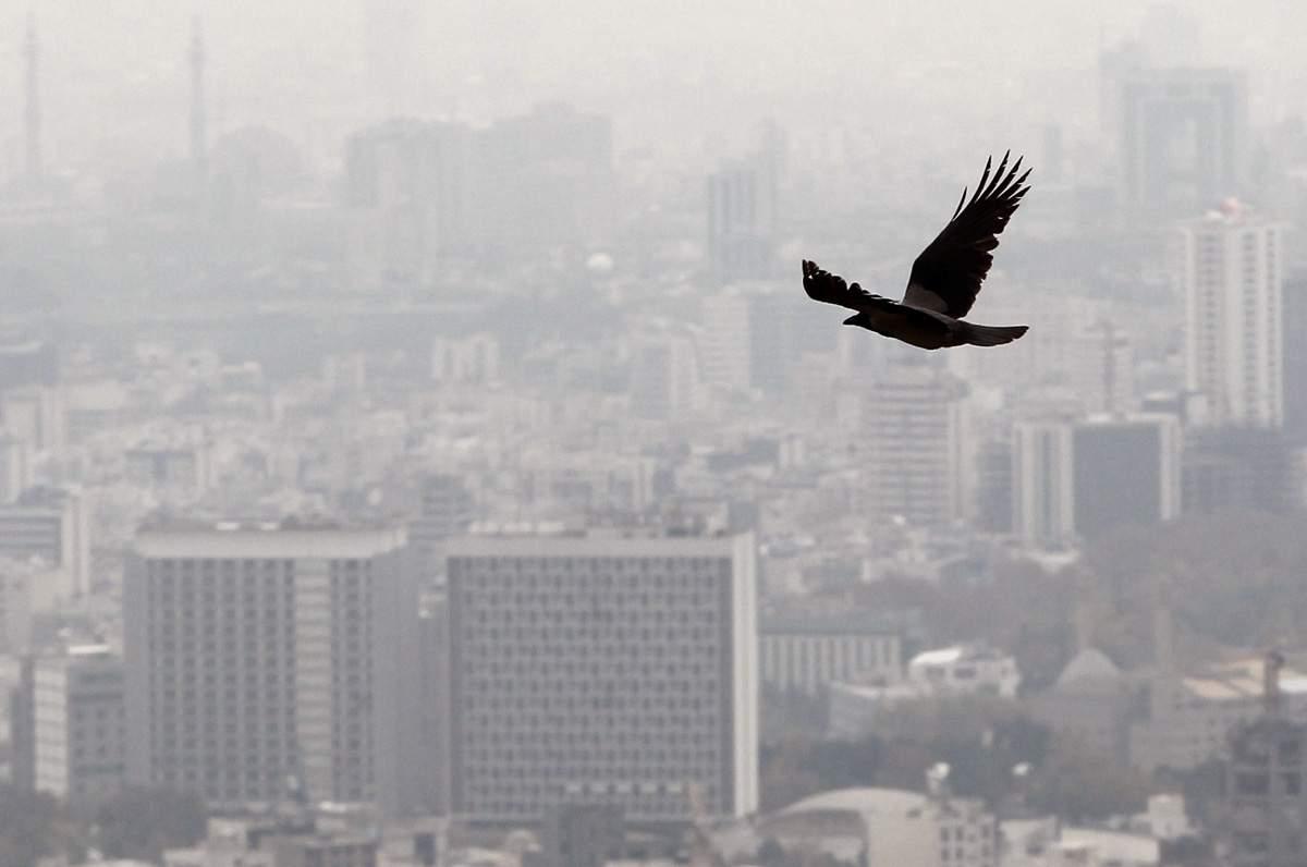 آلودگی هوا سالانه ۷ میلیون قربانی میگیرد