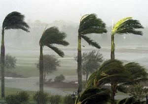 وزش باد نعشی در مرکز و شرق هرمزگان / مواج شدن دریا در تنگه هرمز