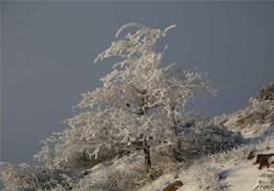 روز برفی در زنجان