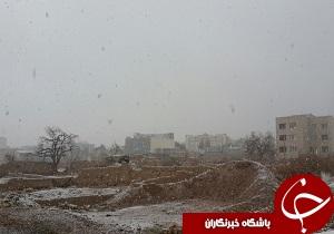 بارش برف و باران در استان سمنان