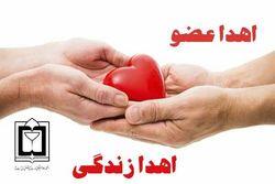 اهدای اعضای شهروند تربت جامی به سه بیمار