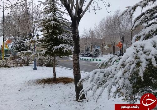 بارش برف به روایت تصویر در استان سمنان