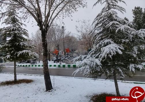 بارش برف به روایت تصویر در استان سمنان+ تصویر