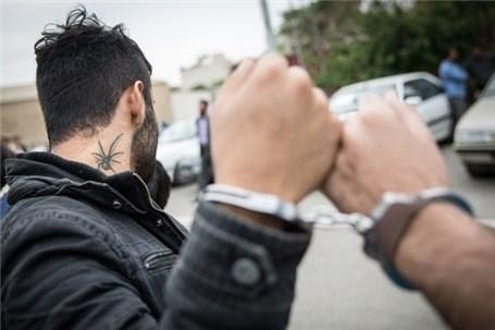 دستگیری سارق میلیاردی لوازم داخل خودرو با ۲۰ فقره