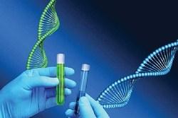 بهزیستی طرح شناسایی اختلالات ژنتیک در افراد معلول را اجرا میک ند