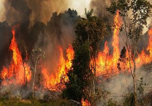 مهار آتش ۳۵ هکتاری اراضی ملی ماسال