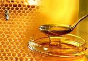 راه اندازی زنجیره تولید عسل در استان کرمانشاه