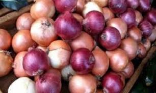 وضعیت بازار میوه تره بار در زمستان ۹۸ / پیاز ارزان میشود