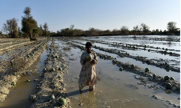 رسیدگی به مشکلات سیلزدگان سیستان و بلوچستان در اولویت است